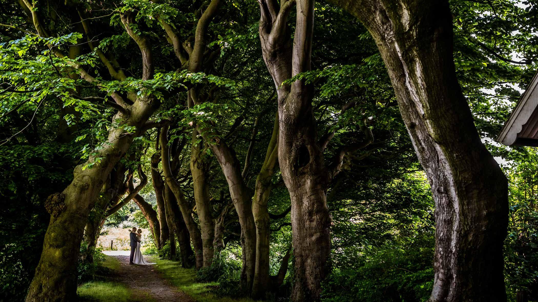 Bomenlaan Buitenplaats Amerongen